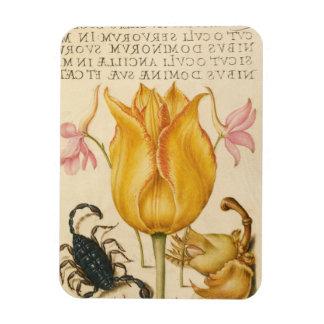 yellow tulip scorpio magnet