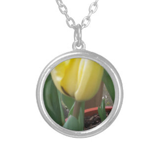 Yellow tulip silver plated necklace
