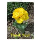 Yellow Tulip Thank You Card