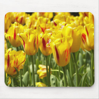 Yellow Tulips Floral Mouse Pad