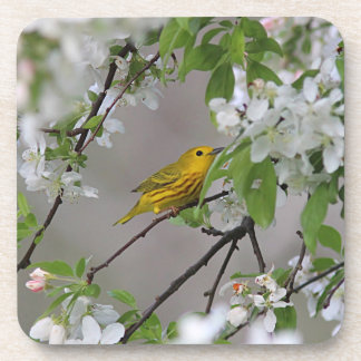 Yellow Warbler and Spring Blossoms Beverage Coasters