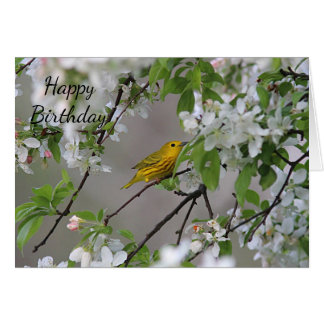 Yellow Warbler and Spring Blossoms Card