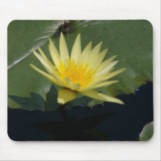 Yellow Waterlily mousepad