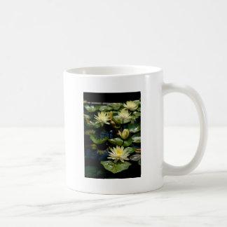 Yellow Waterlily Mug