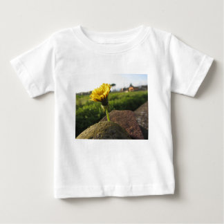 Yellow wildflower growing on stones at sunset baby T-Shirt
