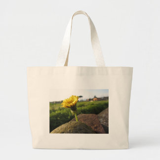 Yellow wildflower growing on stones at sunset large tote bag