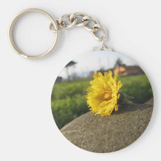 Yellow wildflower lying on a stone at sunset basic round button keychain
