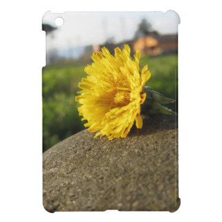 Yellow wildflower lying on a stone at sunset iPad mini cases