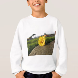 Yellow wildflower lying on a stone at sunset sweatshirt