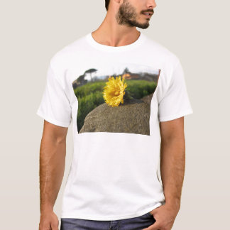 Yellow wildflower lying on a stone at sunset T-Shirt