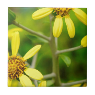Yellow Wildflowers Ceramic Tiles