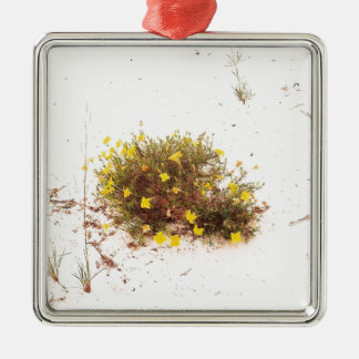 Yellow Wildflowers in White Sand Silver-Colored Square Ornament