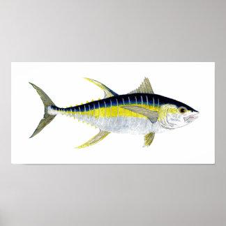 Yellowfin Tuna Artwork Poster