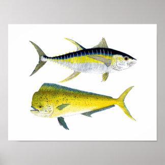 Yellowfin Tuna & Saltwater Dorado Poster