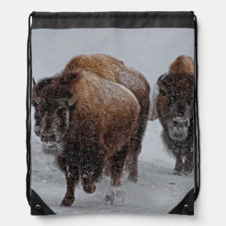 Yellowstone Bison Cinch Bag
