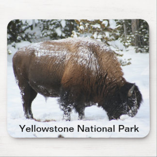 Yellowstone Bison in Winter Mousepad