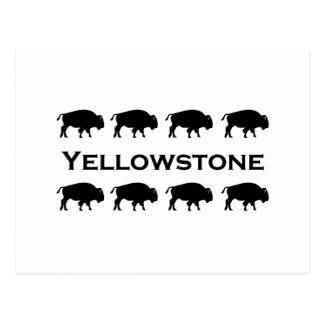 Yellowstone Bison Logo Postcard