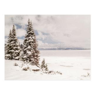 Yellowstone Lake in Yellowstone National Park Postcard