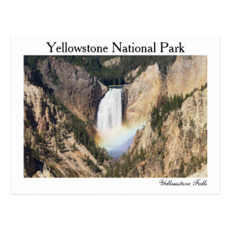 Yellowstone - Lower Yellowstone Falls postcard