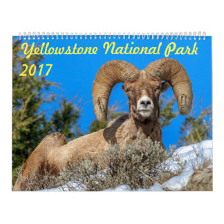 Yellowstone National Park 2017 Wall Calendar