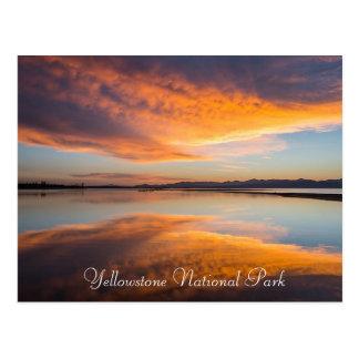 Yellowstone National Park Montana Postcard