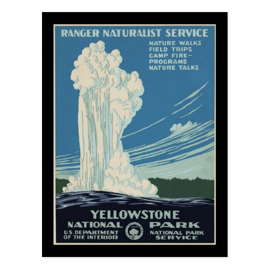 Yellowstone National Park ranger Postcard