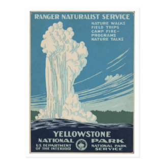Yellowstone National Park Vintage Postcard
