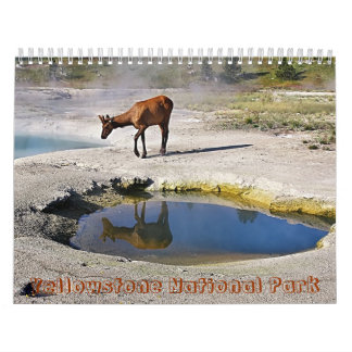 Yellowstone National Park Wall Calendar