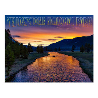 Yellowstone National Park Wyoming at Sunset Stream Postcard
