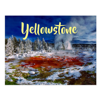 Yellowstone National Park Wyoming Postcard