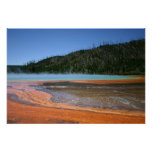 Yellowstone Nationalpark Poster