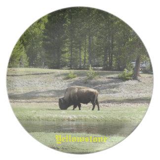 Yellowstone souvenir plate