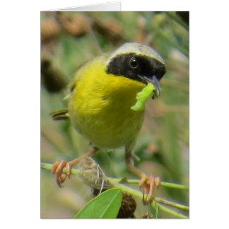 Yellowthroat Greeting Card