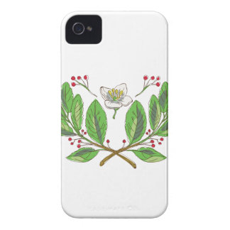 Yerba Mate Flower Leaf and Fruit Drawing Case-Mate iPhone 4 Case
