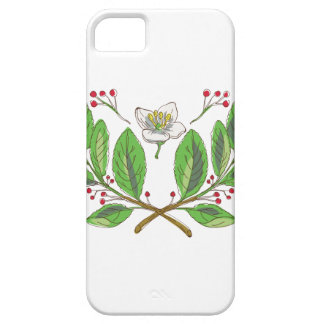 Yerba Mate Flower Leaf and Fruit Drawing iPhone 5 Case