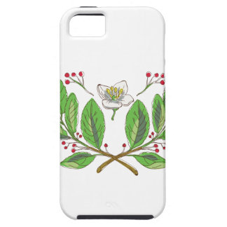 Yerba Mate Flower Leaf and Fruit Drawing iPhone 5 Cover