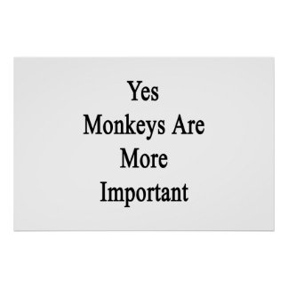 Yes Monkeys Are More Important Poster