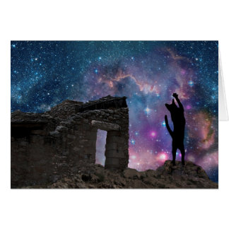 Yeshua's Cat: Nazareth Night Sky Card