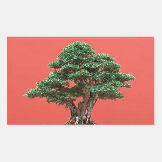 Yew bonsai sticker