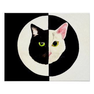 Yin and yang black and white cats painting poster
