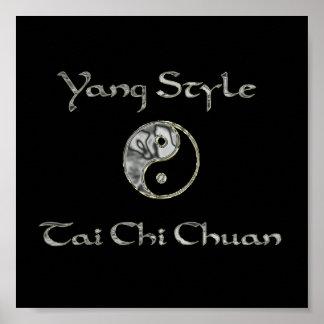 Yin Yang Chrome, Yang Style Chrome, tai chi chrome Poster
