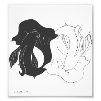 Ying and Yang koi Photo Print
