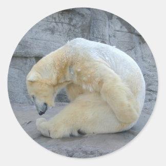 Yoga Bear Classic Round Sticker