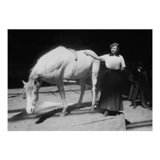 Yoga Horse, 1910s Poster
