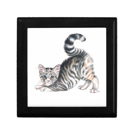 yoga kitten gift box