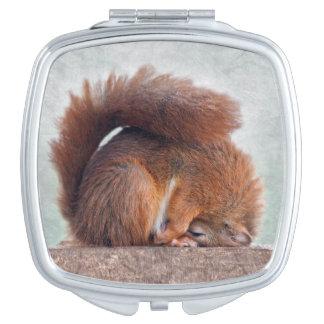 Yoga Squirrel Compact Mirror
