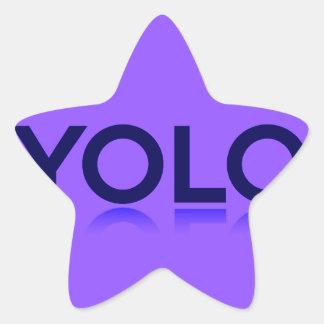 YOLO GEAR! STAR STICKER
