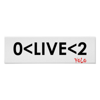 YOLO Math Funny Poster
