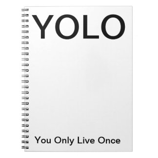 YOLO you only live once Notebook