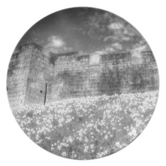York City Walls Infrared Plate